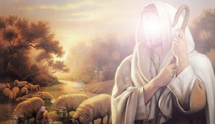 Detik-detik Nabi Zakariya Dibunuh Bani Israil Saat Bersembunyi dalam Pohon