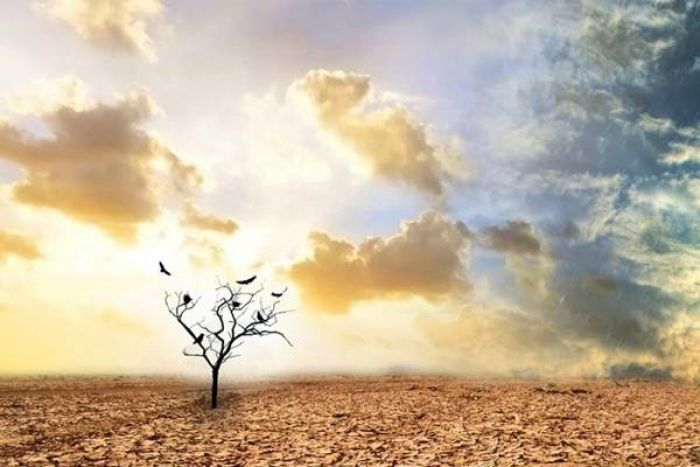 Rasulullah SAW Peringatkan Kita tentang Datangnya Zaman Penuh Tipu Daya
