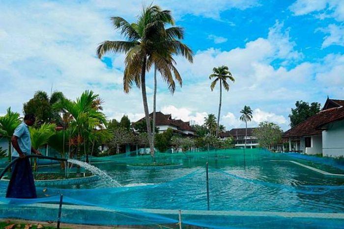 Pendapatan Nol, Resort Mewah Banting Setir Jadi Kolam Ikan