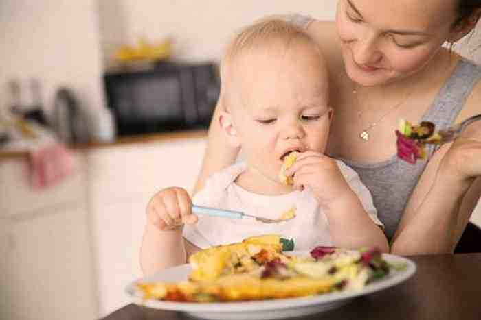 Menu Makanan Bayi 1 Tahun